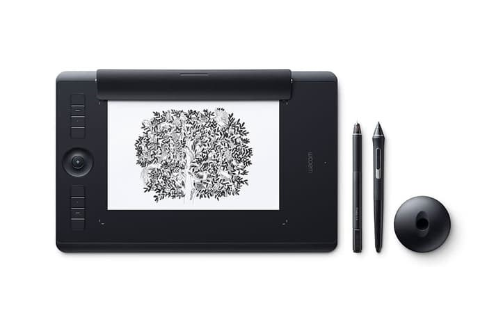 Pen Tablet Wacom Intuos PRO Small (A6) - PTH-451/K1